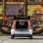 smart fortwo 2014 (4)