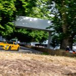 superdeportivos Festival Velocidad Goodwood 2016 (9)
