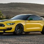 """Shelby GT350 Mustang  """"Ole Yeller"""" (3)"""