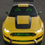vendido-shelby-gt350-mustang-ole-yeller (2)