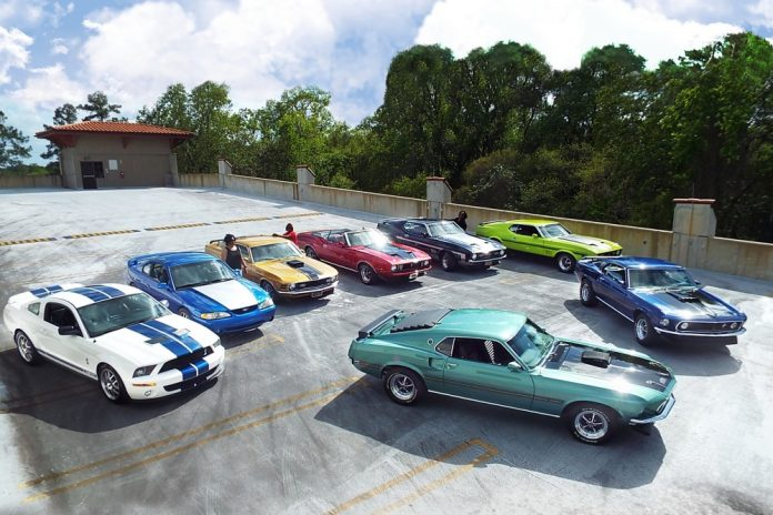 Speed Family Mustangs