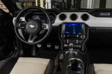 Mustang Ice White coupe interior